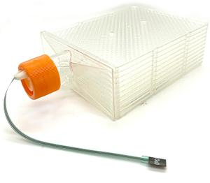 Hyper Flask with glucose sensor